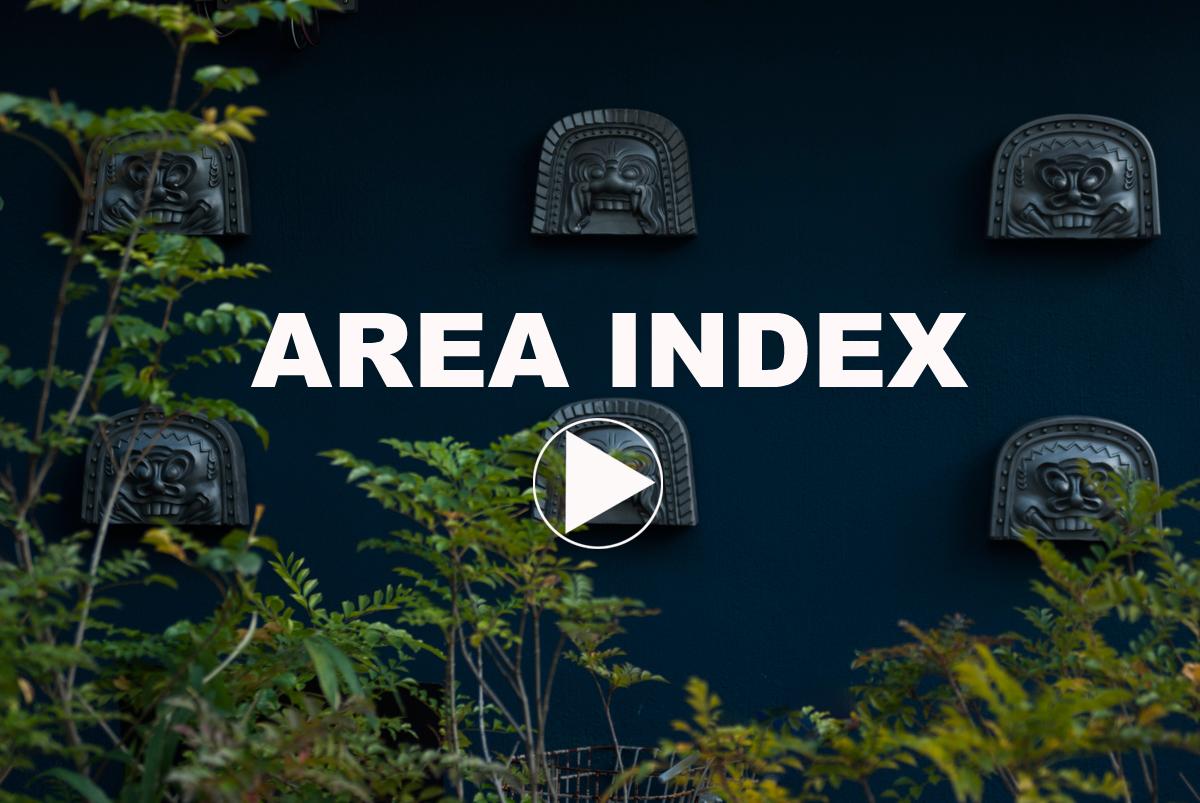 area index